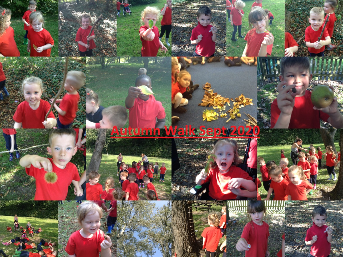Autumn Walk Sept2020 Class CD.jpg